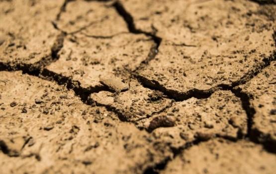 Латвия попросила у Еврокомиссии 360 млн евро на компенсацию убытков от засухи