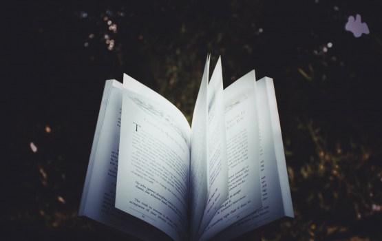 В Даугавпилсе пройдут Дни поэзии