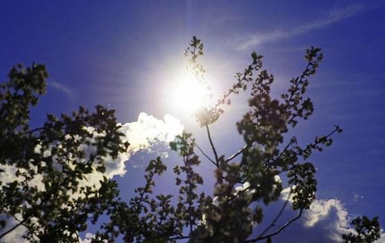 Ближайшие дни, по всей вероятности, станут самыми теплыми в сентябре
