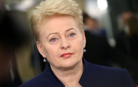 Литва предлагает создать в ЕС единый стандарт охраны границ