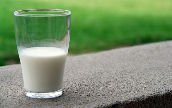 Количество сданного в Латвии в октябре молока уменьшилось на 3,7%