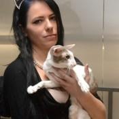 Даугавпилс собрал самых красивых кошек (ФОТО)