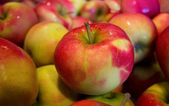 Во всех латвийских яблоках и картошке нашли пестициды — в том числе запрещенные