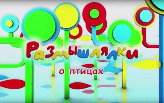 """Размышлялки"" о птицах (видео)"