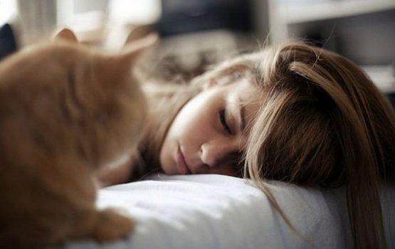 В Латвии 41% жителей может заснуть за несколько минут