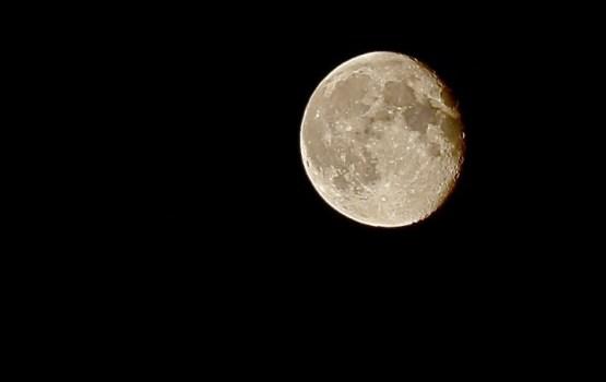 В SpaceX планируют через год совершить турполет вокруг Луны