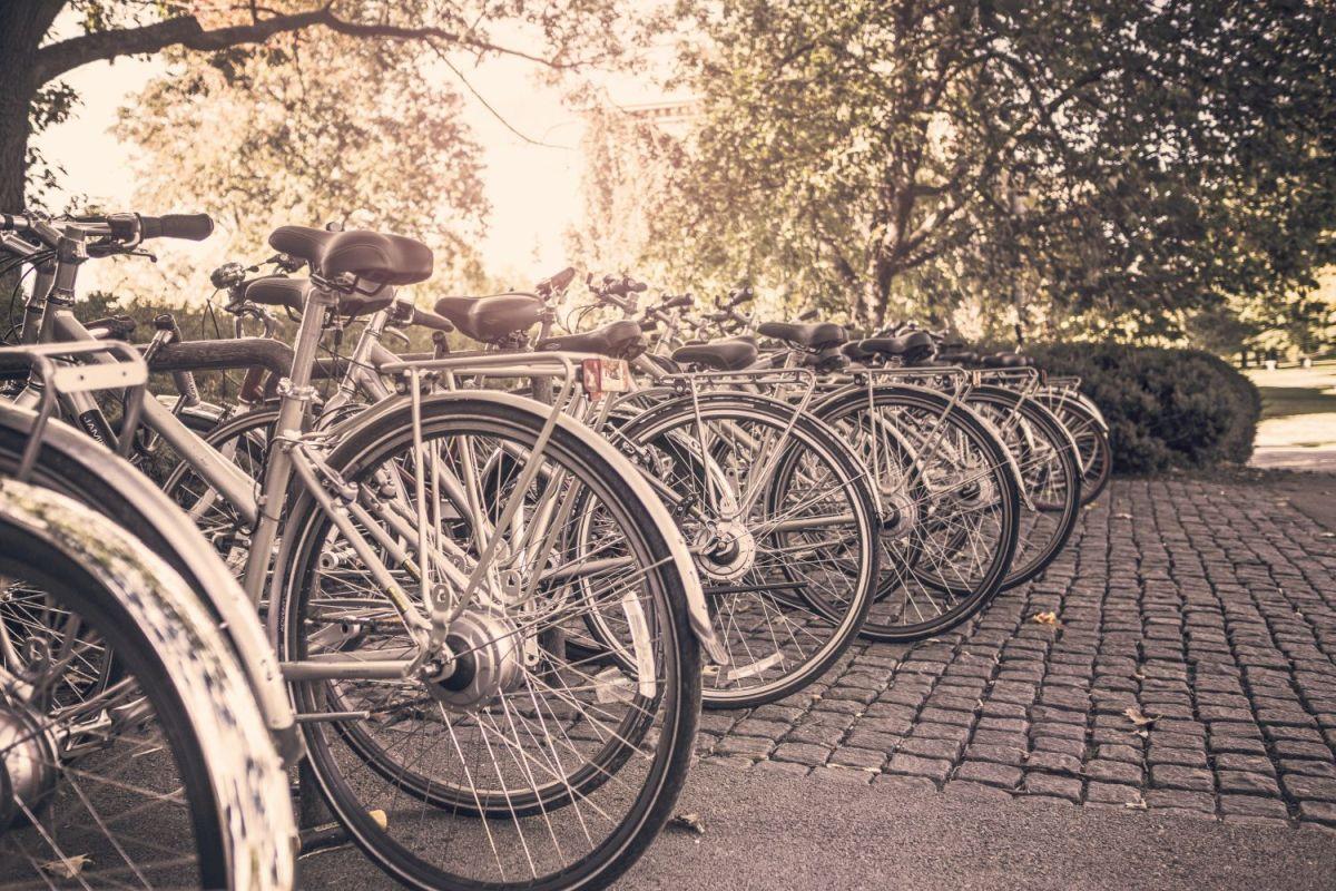 В городе скоро появятся два пункта велопроката