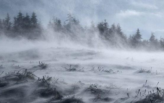 Неделя будет ветреной и снежной