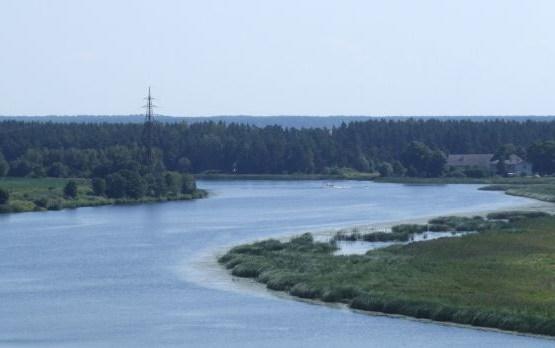 Спасатели достали из водоемов Латвии пятерых утопленников
