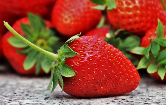 Из-за жары Латвия может потерять половину урожая ягод