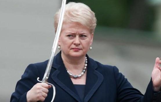Президент Литвы призвала быть готовыми к нападению России