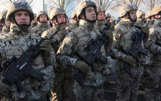 Молодого человека отказались брать в армию из-за убитой чайки