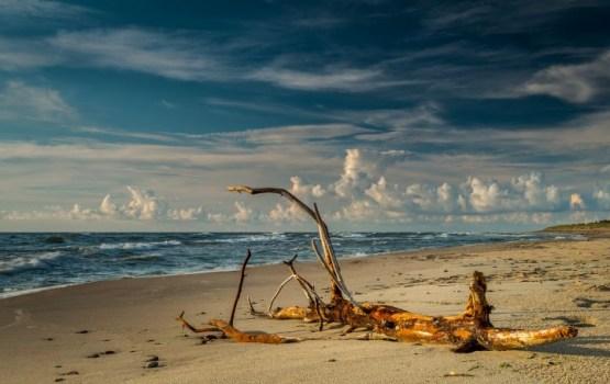 В Курземе на морское побережье выбросило труп