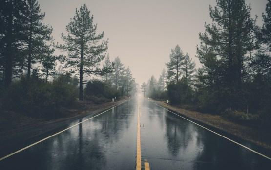 В четверг воздух прогреется до +8, будет идти дождь