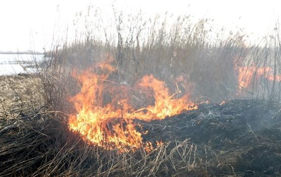 За сутки – четыре поджога старой травы
