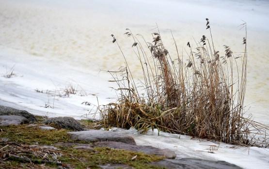 Уровень воды в реках неустойчивый