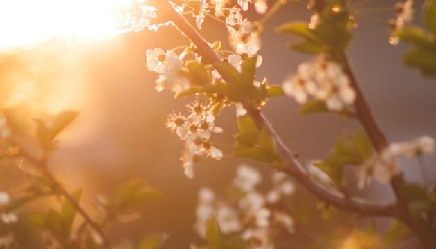Весна возвращается: сегодня днем воздух в Латвии прогреется до +17