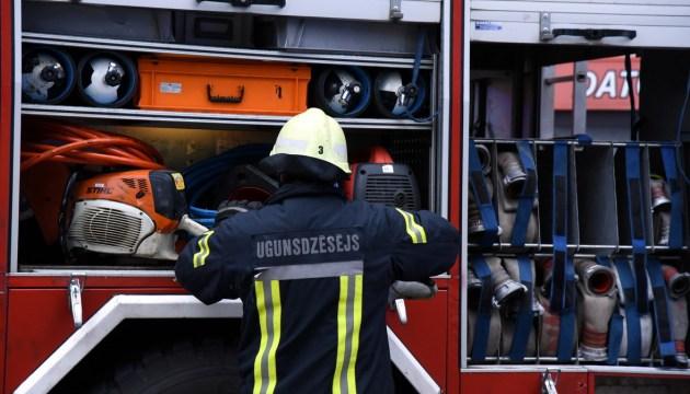 Пожарные вытащили енота из ямы