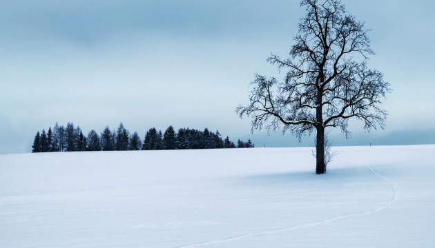 Во второй половине следующей недели ожидаются холода