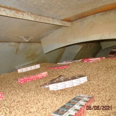 Таможенники нашли более 6 000 пачек контрабандных сигарет