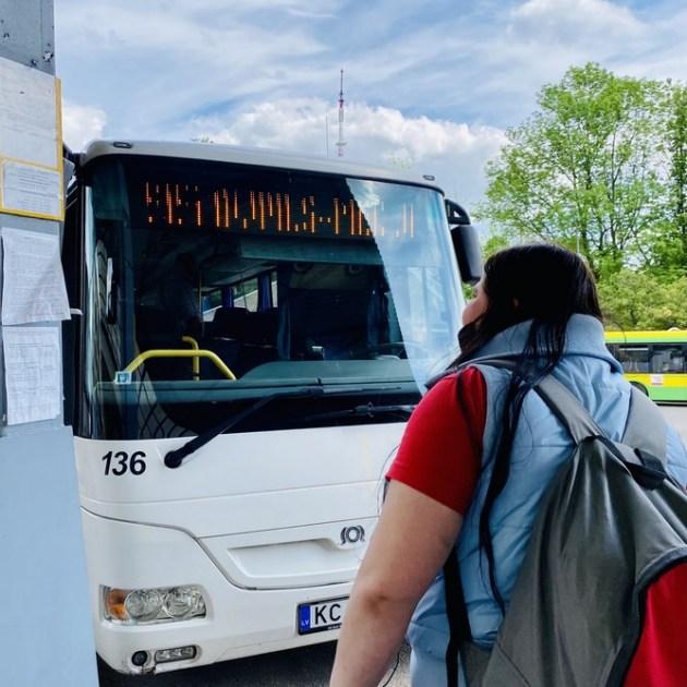 Мышеловка для бесплатного автобуса
