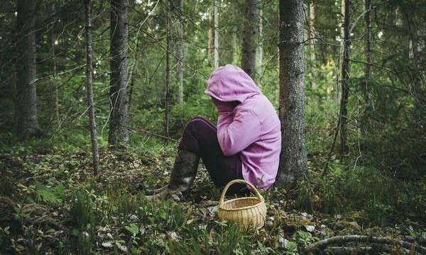 В лесах Латвии с начала года заблудились 77 человек